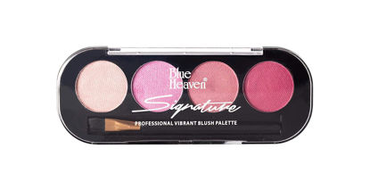 Blue Heaven Signature Blush Palette