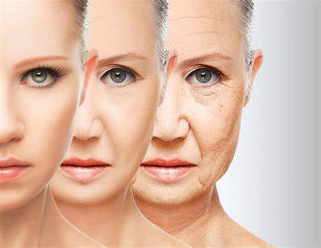 Picture for category Anti ageing Product